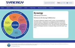 Synergy Collaborative